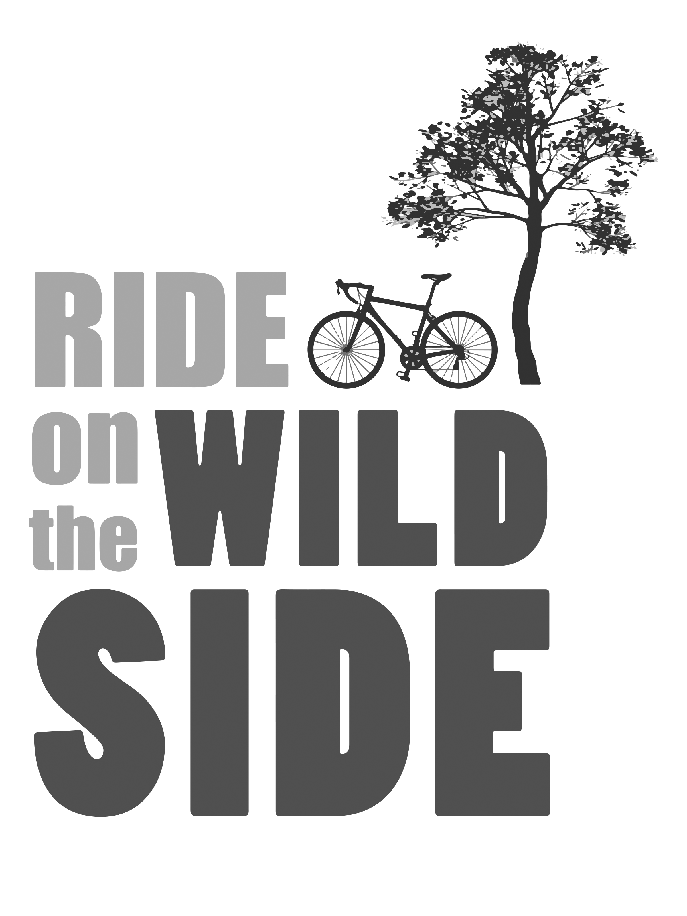 0062 – Ride on the Wild Side